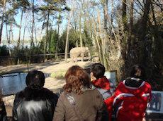 olifant Burgers zoo